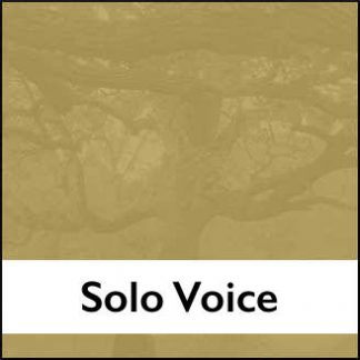 Solo Voice